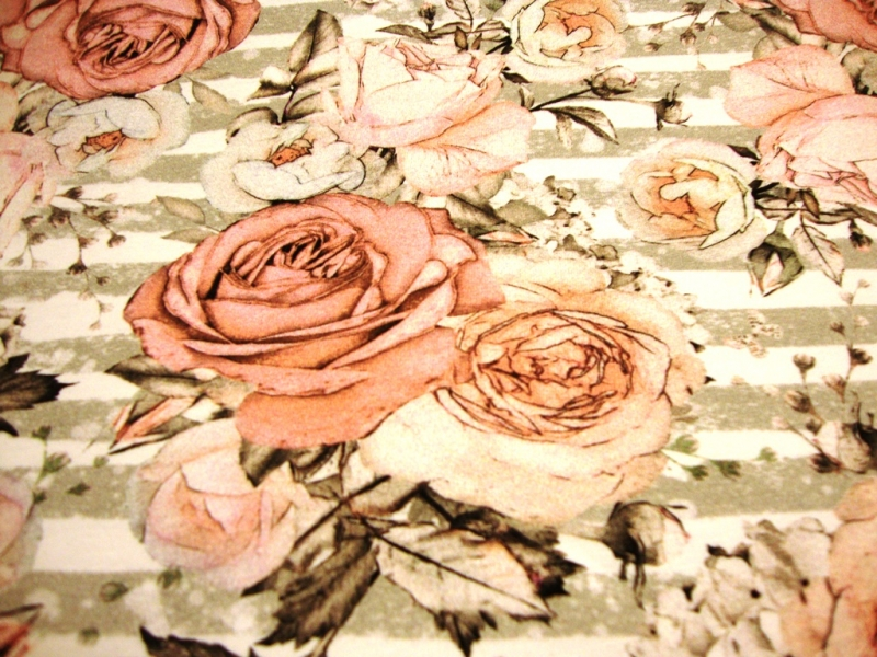 - Baumwoll-Jerseystoff Digitaldruck große Rosen Blumen auf Streifen beige / grau / altrosa - Baumwoll-Jerseystoff Digitaldruck große Rosen Blumen auf Streifen beige / grau / altrosa