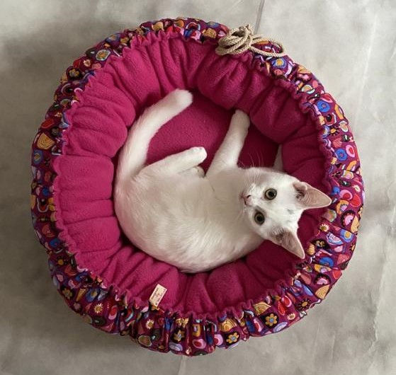Kleinesbild - Katzenbett Hundebett Tierschlafplatz Bett Katzen Hunde Bett Schlafplatz Kissen