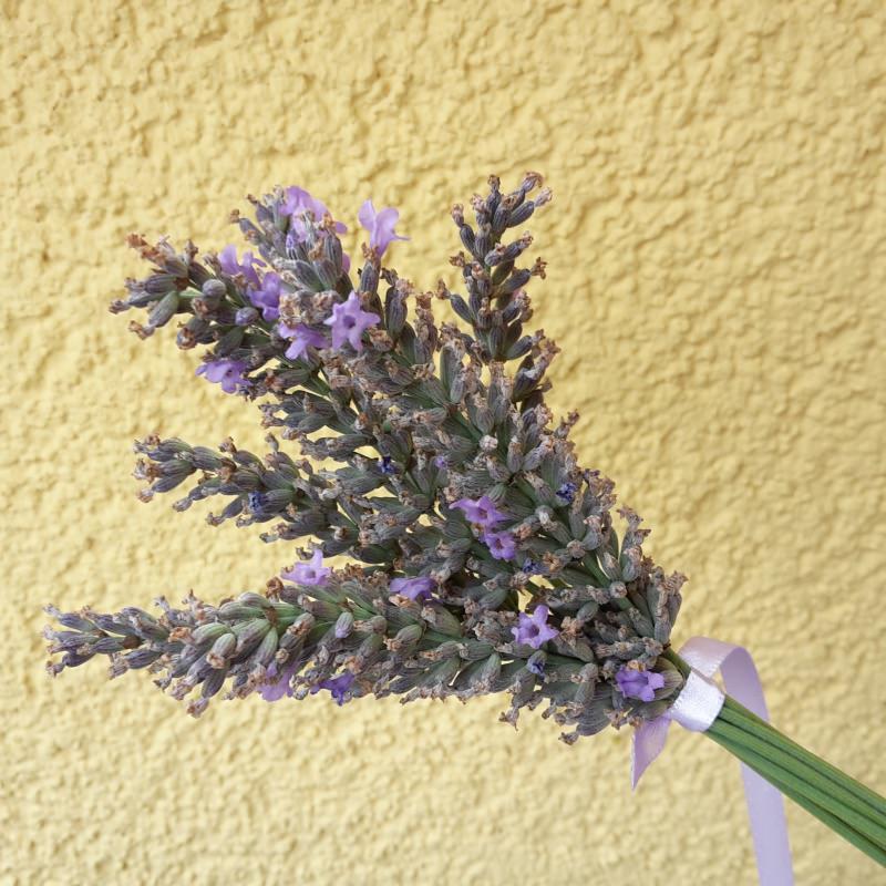 Kleinesbild - 3er Set Lavendel-Keulchen - dufte und dekorativ