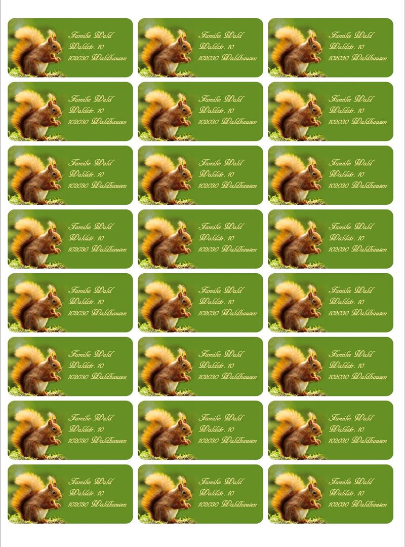 Kleinesbild - 24  Adressaufkleber eckig | Eichhörnchen - umweltfreundlich
