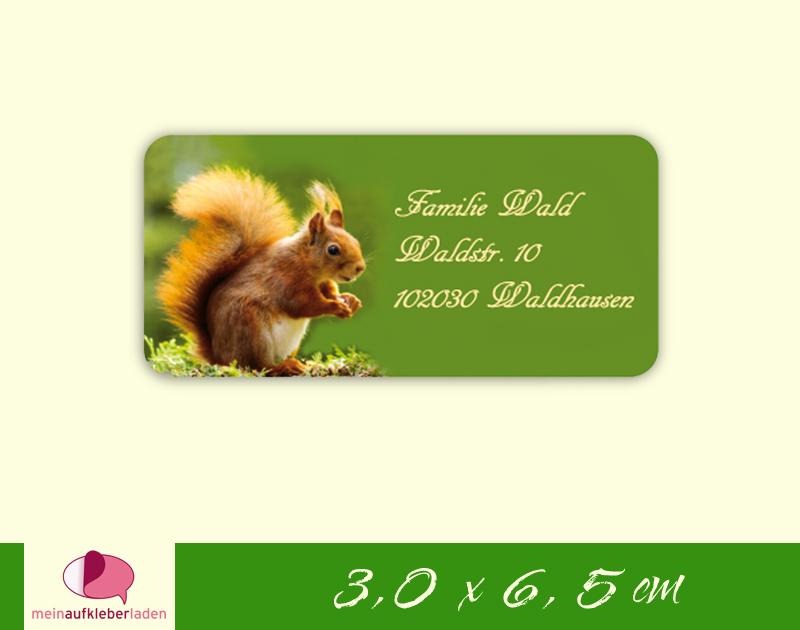 - 24  Adressaufkleber eckig | Eichhörnchen - umweltfreundlich  - 24  Adressaufkleber eckig | Eichhörnchen - umweltfreundlich