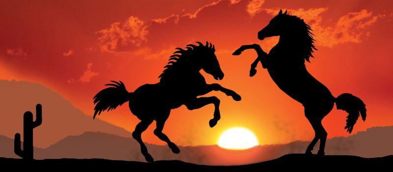 Kleinesbild - Kinderbordüre - selbstklebend | Wildpferde - 18 cm Höhe | Vlies Bordüre mit Sonnenuntergang u. Wildpferden in der Prärie