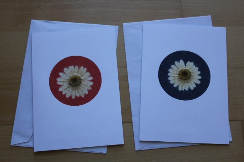 - Grußkarten, verziert mit Margeriten und Sand in rot und blau - Grußkarten, verziert mit Margeriten und Sand in rot und blau