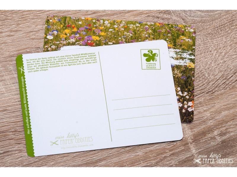 Kleinesbild - Postkarte »Mehr Blümchen und Bunt für ALLE!«, gefüllt mit Wildblumensamen