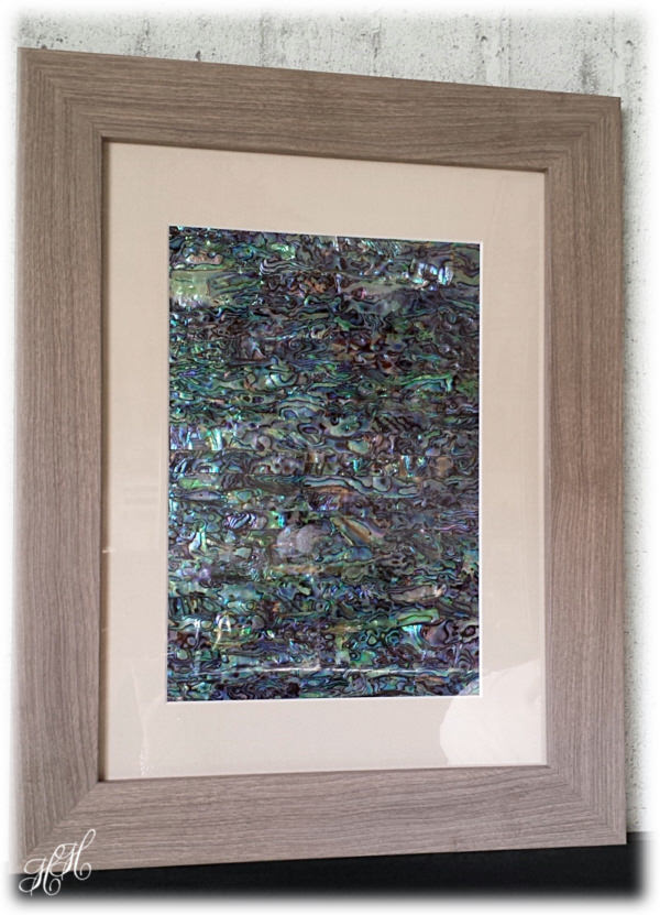 Kleinesbild - Großes Abalone Paua Muschel (See-Opal) Bild - Shabby grau