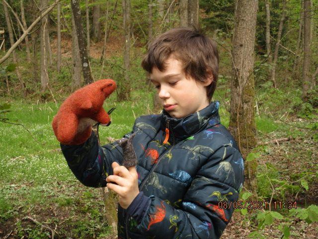Kleinesbild - Handpuppe, Fuchs, handgefilzt