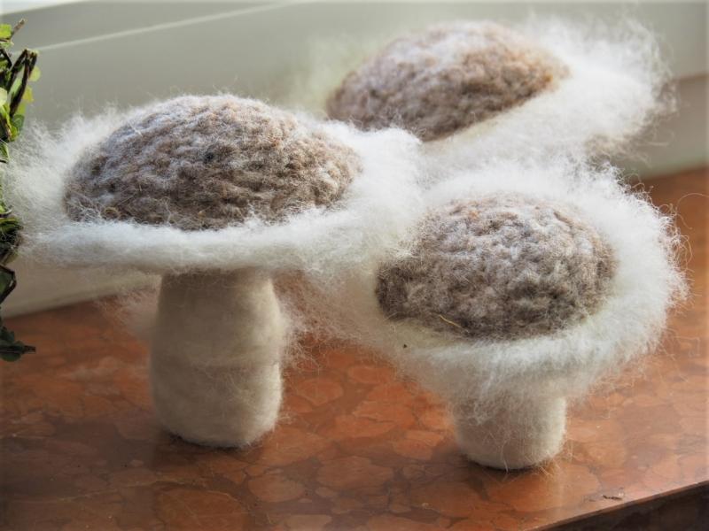 - 3 Dekopilze * 100 % Wolle * Handgefertigt * Jahreszeitentisch * Herbst * Nadelfilz *  - 3 Dekopilze * 100 % Wolle * Handgefertigt * Jahreszeitentisch * Herbst * Nadelfilz *