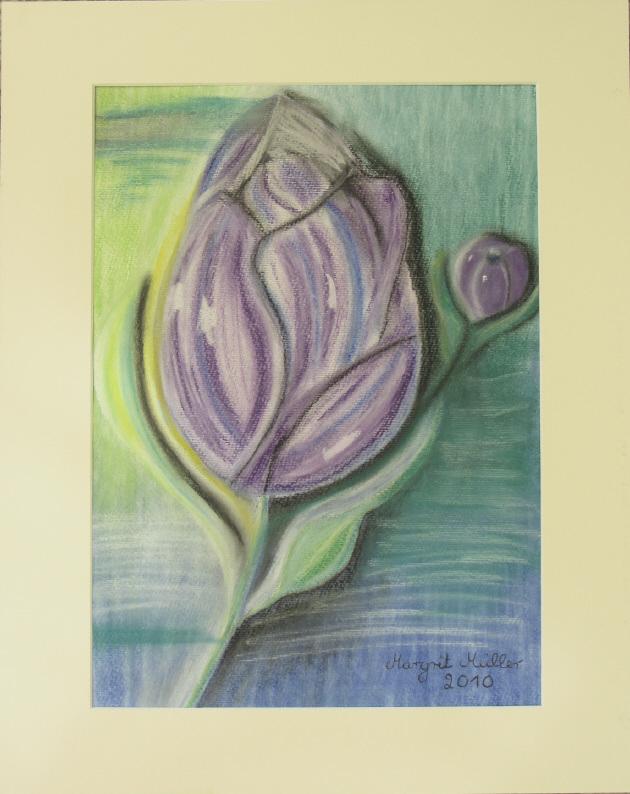Kleinesbild - Bild mit dem Titel Lila Tulpen mit Pastelkreiden auf Aquarellpapier direkt von der Künstlerin das Original kaufen