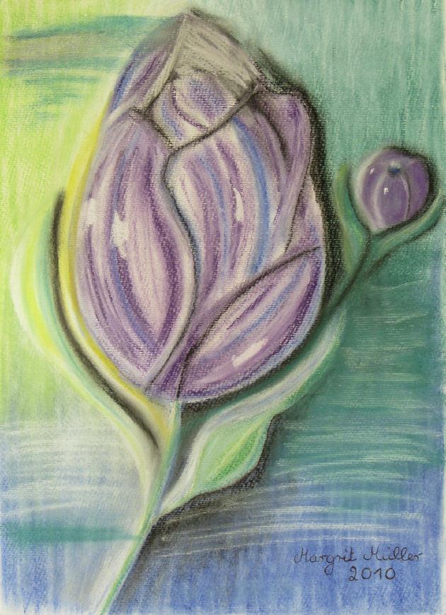 - Bild mit dem Titel Lila Tulpen mit Pastelkreiden auf Aquarellpapier direkt von der Künstlerin das Original kaufen - Bild mit dem Titel Lila Tulpen mit Pastelkreiden auf Aquarellpapier direkt von der Künstlerin das Original kaufen