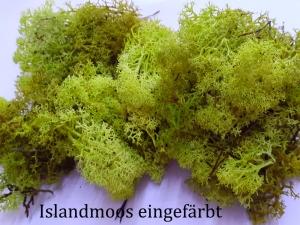 Islandmoos gefärbt, 10 Gramm-Tütchen, Moos zu dekorieren, Trockengestecke, Modellbau  - Handarbeit kaufen