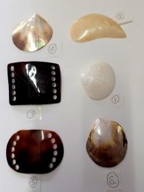 Große Muscheln Muschelschalen vorgebohrt zum Basteln freie Auswahl Perlmutt Meer glänzend Schimmer - Handarbeit kaufen