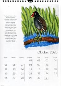 Tierkalender 2020, Wandkalender DIN A 4