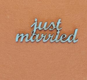 Schriftzug ★ just married ★ Schriftzug für Geschenke, Hochzeit, Tischdekoration - Handarbeit kaufen