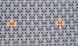 Baumwollstoff Katzen in grau, Meterware Kim, Webware, Stoffe kaufen bei la piccola Antonella  - Handarbeit kaufen