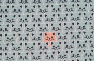 Baumwollstoff Katzen in mint, Meterware Kim, Webware, Stoffe kaufen bei la piccola Antonella   - Handarbeit kaufen