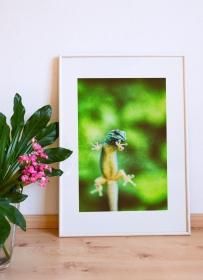 Gecko Natur Tropen Wald Salamander Fotografie Fineart Print Kunst Fotokunst DIN A4