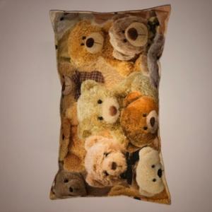 Kleines supersüßes Kissen mit vielen Teddybären