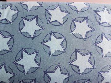 Baumwoll Jersey in Stars in the Middel (Trükis/Petrol)