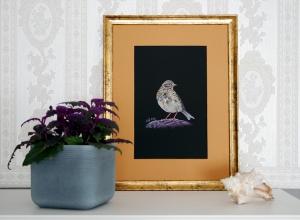 Fine Art Print MEADOW PIPIT ★ auf Hahnemühle-Papier in Museumsqualität