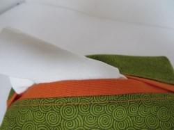 Tatüta grün mit Spiralen und orangem Innenfutter