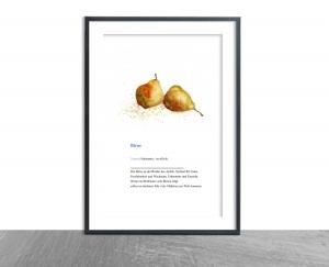 Wanddekoration Poster Zwei Birnen mit Definition, hochwertiger Kunstdruck A4 - Handarbeit kaufen