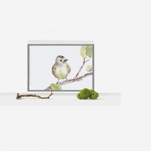 Fine Art Print vom Originalen Aquarell Vögelchen - Handarbeit kaufen
