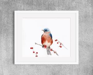 Fine Art Print des handgemalten Aquarells , Vogel mit Beeren - Handarbeit kaufen