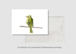 Kunstkarte incl. Büttenumschlag Fine Art Print des Aquarelles, Grünfink - Handarbeit kaufen