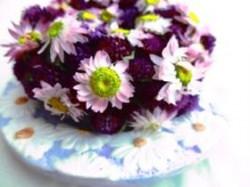 Naturkranz mit Amaranth Blumen und Sonnenflügeln