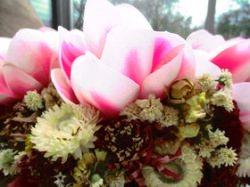 Naturkranz mit Magnolien und Eidose, Ø 26cm