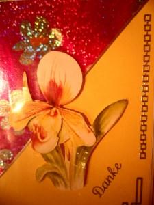 Mit dieser Danke Karte kann man mit lieben Worten oder auch mit wenigen € einer oder mehreren Personen seine Anerkennung zeigen. Bis 6 Karten Portogebühren 1,45€