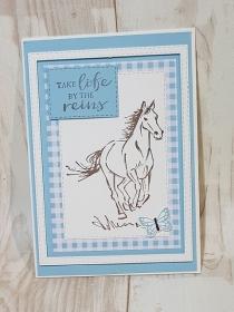Grußkarte für Pferdeliebhaber - Handarbeit kaufen