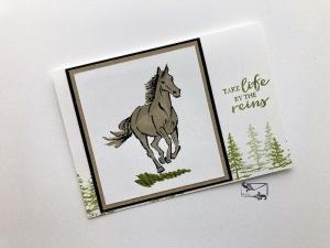 Grußkarte mit Pferd und Spruch Stampin up! Handarbeit Klappkarte - Handarbeit kaufen