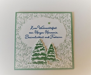 Weihnachtskarte Geldkarte Gutscheinkarte - Grün Handarbeit Stampin Up - Handarbeit kaufen