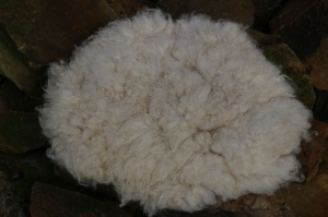 Sitzkissen aus Filz, vegetarische Felle - Handarbeit kaufen