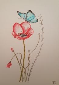 Schmetterling auf Mohnblume, Aquarellmalerei mit Soft Brush Pens auf Aquarellpapier, Größe des ungerahmten Bildes DIN A5, zu kaufen