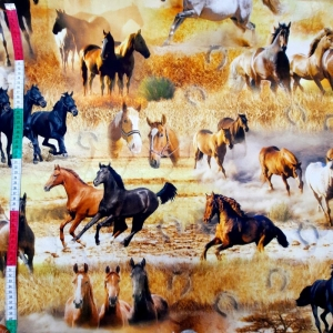 ☆ Dekostoff  :Freiheit: Pferde naturgetreu  ?   auf 100% Baumwolle . Der Grundfarbe des bedruckten  Dekostoffs ist in orangetönen gehalten.