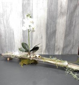 Tischgesteck mit weißer Orchidee, länglich, modern, Frühlingsdeko, Wohndekoration, Tischdekoration