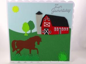 Geburtstagskarte, Verpackung für Gutschein Reitstunden Pferd auf Bauernhof, ca. 15 x 15 cm