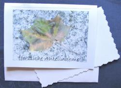 Beileidskarte Ahornblatt auf Stein fotografiert und gedruckt auf Fotopapier mit dem Schriftzug Herzliche Anteilnahme