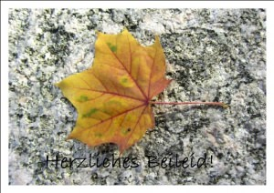 Beileidskarte Ahornblatt auf Stein handgemacht kaufen
