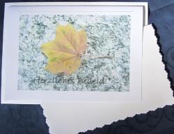 Beileidskarte Ahornblatt auf Stein fotografiert und gedruckt auf Fotopapier mit dem Schriftzug Herzliches Beileid