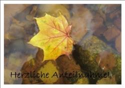 Beileidskarte Ahornblatt auf Wasser handgemacht kaufen