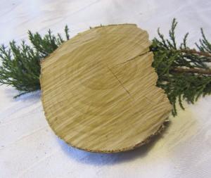 Baumscheibe handgemacht zum Bemalen und dekorieren kaufen