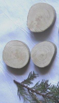 Baumscheibe handgemacht aus Buchenholz zum Basteln oder Bemalen kaufen