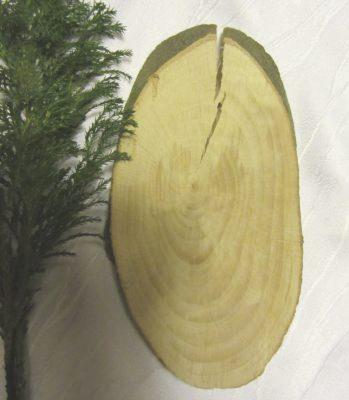 Baumscheibe handgemacht aus Buchenholz zum Basteln kaufen