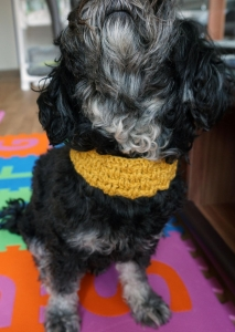 ♡ Hundehalsband Flechtmuster gelb♡ amigoll9 ♡ Deko ♡ Handarbeit ♡