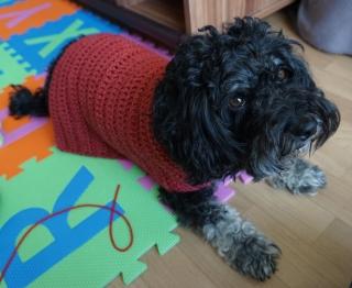 ♡ Hundemantel rot ♡ amigoll9 ♡ Deko ♡ Handarbeit ♡