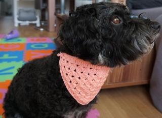 ♡ Hundehalstuch rosa♡ amigoll9 ♡ Deko ♡ Handarbeit ♡