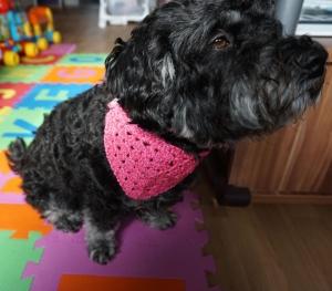 ♡ Hundehalstuch Glitzer rosa♡ amigoll9 ♡ Deko ♡ Handmade♡ - Handarbeit kaufen
